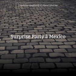 Surprise Party à Mexico