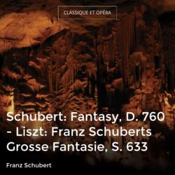 Schubert: Fantasy, D. 760 - Liszt: Franz Schuberts Grosse Fantasie, S. 633