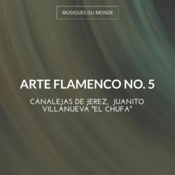 Arte Flamenco No. 5