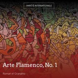 Arte Flamenco, No. 1