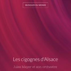 Les cigognes d'Alsace
