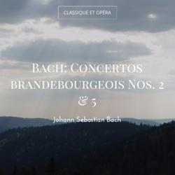 Bach: Concertos brandebourgeois Nos. 2 & 5