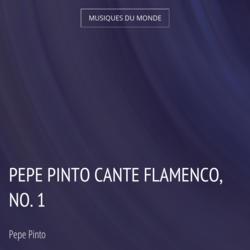 Pepe Pinto cante Flamenco, no. 1