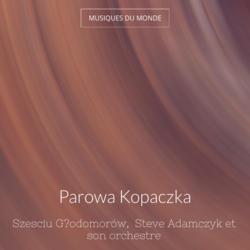 Parowa Kopaczka