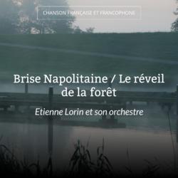 Brise Napolitaine / Le réveil de la forêt