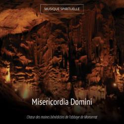 Misericordia Domini