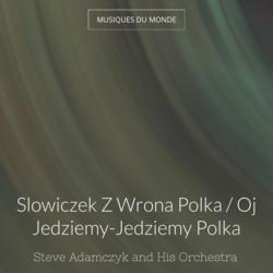 Slowiczek Z Wrona Polka / Oj Jedziemy-Jedziemy Polka