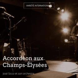 Accordéon aux Champs-Élysées