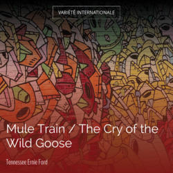 Mule Train / The Cry of the Wild Goose