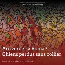 Arriverderci Roma / Chiens perdus sans collier