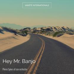 Hey Mr. Banjo