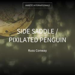 Side Saddle / Pixilated Penguin