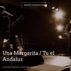 Una Margarita / Tu el Andaluz