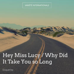 Hey Miss Lucy / Why Did It Take You so Long