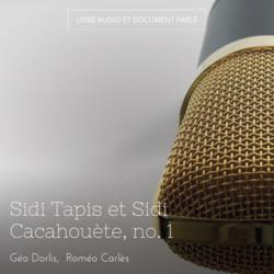 Sidi Tapis et Sidi Cacahouète, no. 1