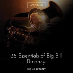35 Essentials of Big Bill Broonzy