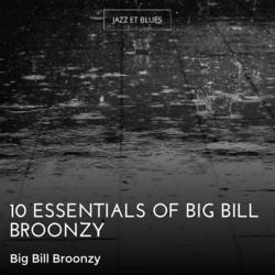 10 Essentials of Big Bill Broonzy