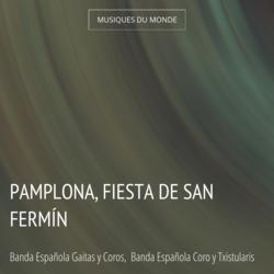 Pamplona, Fiesta de San Fermín