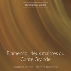 Flamenco : deux maîtres du Cante Grande