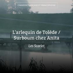 L'arlequin de Tolède / Surboum chez Anita