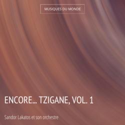 Encore... Tzigane, vol. 1