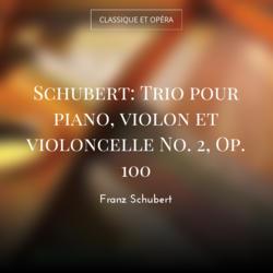 Schubert: Trio pour piano, violon et violoncelle No. 2, Op. 100