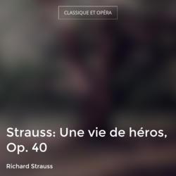 Strauss: Une vie de héros, Op. 40