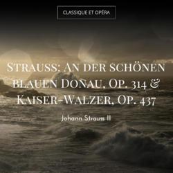 Strauss: An der schönen blauen Donau, Op. 314 & Kaiser-Walzer, Op. 437
