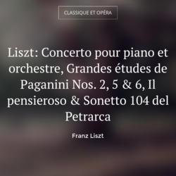Liszt: Concerto pour piano et orchestre, Grandes études de Paganini Nos. 2, 5 & 6, Il pensieroso & Sonetto 104 del Petrarca