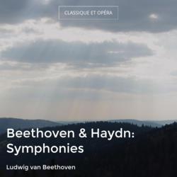 Beethoven & Haydn: Symphonies