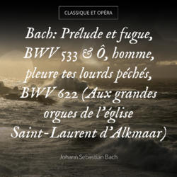 Bach: Prélude et fugue, BWV 533 & Ô, homme, pleure tes lourds péchés, BWV 622 (Aux grandes orgues de l'église Saint-Laurent d'Alkmaar)