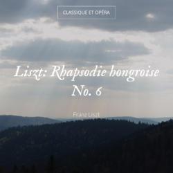 Liszt: Rhapsodie hongroise No. 6