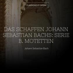 Das Schaffen Johann Sebastian Bachs: Serie B. Motetten