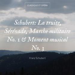 Schubert: La truite, Sérénade, Marche militaire No. 1 & Moment musical No. 3