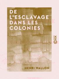 De l'esclavage dans les colonies