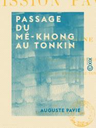 Passage du Mé-Khong au Tonkin